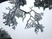 2012/12/31歲末上 北插天山 賞霧淞:DSC00835.JPG