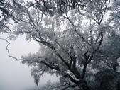 2012/12/31歲末上 北插天山 賞霧淞:DSC00836.JPG