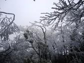2012/12/31歲末上 北插天山 賞霧淞:DSC00838.JPG