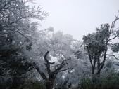 2012/12/31歲末上 北插天山 賞霧淞:DSC00842.JPG