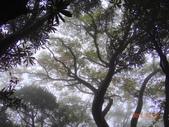 2013/10/12風雨無阻 賞山毛櫸 北插天山 :DSC05161.JPG