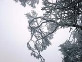 2012/12/31歲末上 北插天山 賞霧淞:DSC00844.JPG