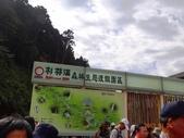 龍潭山岳協會杉林溪會慶2013/03/24:DSC08656.JPG