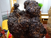 2014/03/19竹林山 觀音寺:DSC08723.JPG