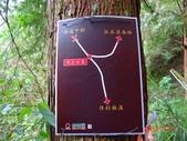 再訪 水漾森林 凋亡之美 2013/09/07/08....2天:DSC04378.JPG