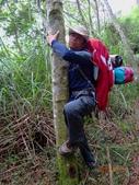再訪 水漾森林 凋亡之美 2013/09/07/08....2天:DSC04369.JPG