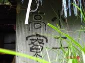 再訪 水漾森林 凋亡之美 2013/09/07/08....2天:DSC04374.JPG