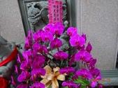 2014/03/19竹林山 觀音寺:DSC08736.JPG