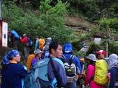 2014/03/23逐鹿山 + 卡保山:DSC08830.JPG