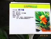 龍潭山岳協會杉林溪會慶2013/03/24:DSC08715.JPG
