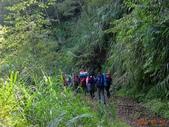 再訪 水漾森林 凋亡之美 2013/09/07/08....2天:DSC04356.JPG