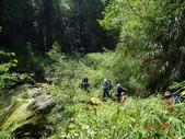 再訪 水漾森林 凋亡之美 2013/09/07/08....2天:DSC04367.JPG