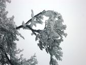 2012/12/31歲末上 北插天山 賞霧淞:DSC00831.JPG