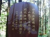 龍潭山岳協會杉林溪會慶2013/03/24:DSC08677.JPG