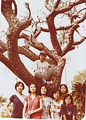 PingClassOutings平班歷年活動與郊遊:Guess who's on the tree?  In 1979 summer after that damn exam