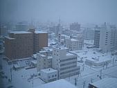 97.2.27~97.3.7北海道到東京自助蜜月之旅:IMG_0041.JPG
