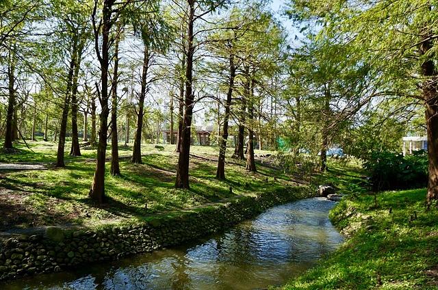 IMG_4271.JPG - 2015/11/16羅東運動公園