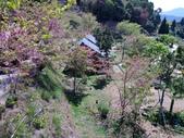 2013~3月&恩愛農場:1202828070.jpg
