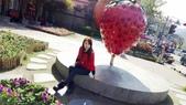 草莓之旅:67916.jpg