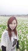 2013/11/11台中花毯節: