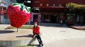 草莓之旅:67915.jpg