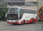 公車巴士-旅遊遊覽車( 紅牌車 ):旅遊遊覽車     229-EE