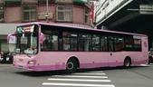 公車巴士-欣欣客運:欣欣客運    KKA-0700