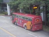 公車巴士-旅遊遊覽車( 紅牌車 ):旅遊遊覽車  269-XX