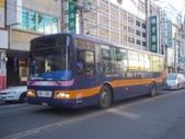 公車巴士-旅遊遊覽車( 紅牌車 ):旅遊遊覽車 195-SS