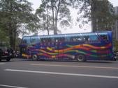公車巴士-旅遊遊覽車( 紅牌車 ):旅遊遊覽車  379-WW