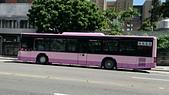 公車巴士-欣欣客運:欣欣客運    KKA-0373