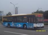 公車巴士-巨業交通:巨業交通  779-U8