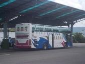 公車巴士-旅遊遊覽車( 紅牌車 ):旅遊遊覽車  362-TT