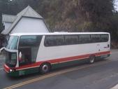 公車巴士-旅遊遊覽車( 紅牌車 ):旅遊遊覽車  097-YY