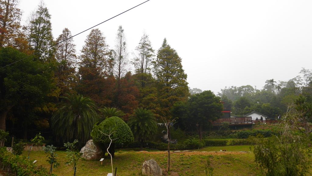 P1090030.JPG - 160102九芎湖