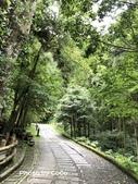 宜蘭縣大同鄉明池森林遊樂區:IMG_8894.JPG