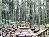 宜蘭縣大同鄉明池森林遊樂區:IMG_8974.JPG