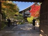 京都 永觀堂/福林寺 楓紅層層:IMG_9940.JPG