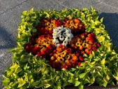 中正紀念堂樂活玩花創意無限花毯展示:122463855_3591997360863853_3650804083839806012_n.jpg