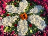 中正紀念堂樂活玩花創意無限花毯展示:122427518_3591997164197206_8076972604111205001_n.jpg