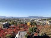 京都 永觀堂/福林寺 楓紅層層:IMG_0009.JPG