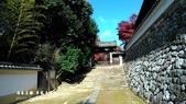 日本京都東福寺賞楓2016:DSC_2437.jpg
