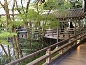 京都 永觀堂/福林寺 楓紅層層:IMG_0086.JPG