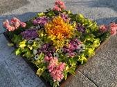 中正紀念堂樂活玩花創意無限花毯展示:122741639_3591997560863833_2984969310028621282_n.jpg