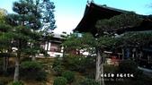 日本京都東福寺賞楓2016:DSC_2447.jpg