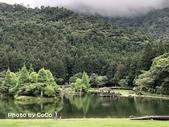 宜蘭縣大同鄉明池森林遊樂區:IMG_8912.JPG