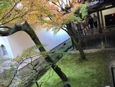 京都 永觀堂/福林寺 楓紅層層:IMG_0068.JPG