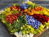 中正紀念堂樂活玩花創意無限花毯展示:122446003_3591997650863824_2977731949068388743_n.jpg