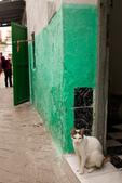 2016 摩洛哥:得土安 TETOUAN