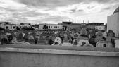 2016 摩洛哥:Martyrs Cemetery